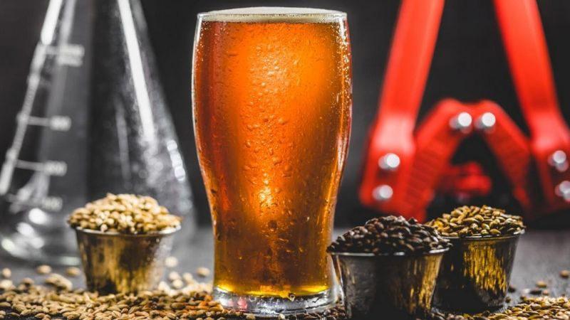 cómo hacer cerveza