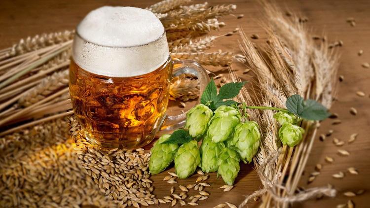 hacer cerveza casera