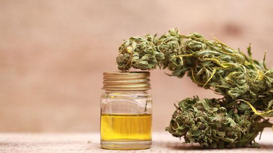 aprender los usos del cannabis